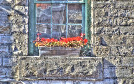 19_window