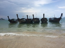 Long Tails Lined up Railay