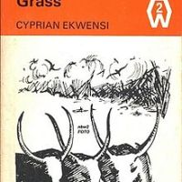 Burning  Grass by Cyprian Ekwensi