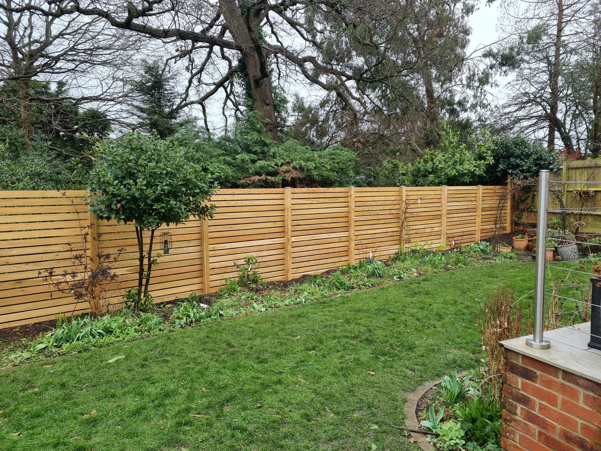 a Siberian Larch Fence Replacement