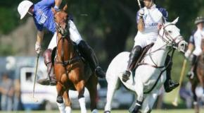 Rugby & Polo fans