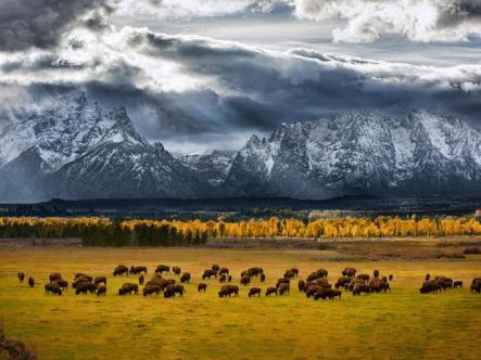 Autor: GLEN HUSH Foto: National Geographic