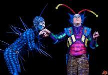 canada-cirque-du-soleil-ovo-2009-5-7-14-21-27