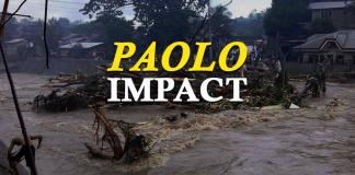 Typhoon Paolo Impact