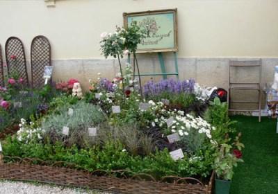 negy-evszak-kerteszet-fehérvárcsurgó 2013 (1)