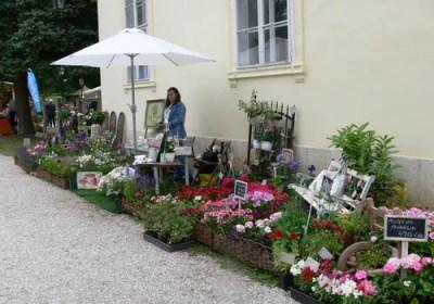 negy-evszak-kerteszet-fehérvárcsurgó 2013 (4)