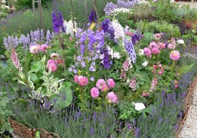 negy-evszak-kerteszet-rózsakert 2013 (1)