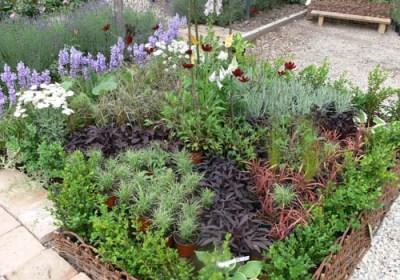 negy-evszak-kerteszet-rózsakert 2013 (2)