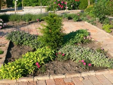 négy-évszak-kertészet-siófok-áruda- (25)