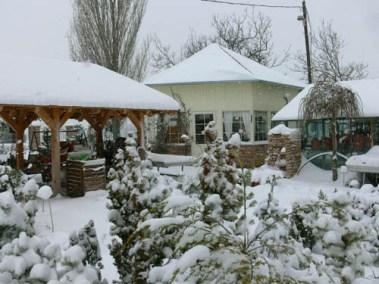 négy-évszak-kertészet-siófok-áruda- (28)