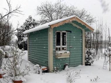 négy-évszak-kertészet-siófok-áruda- (33)