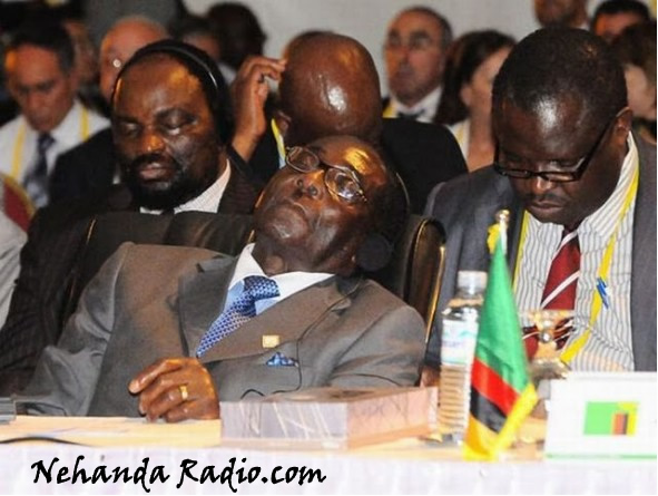 Although Mugabe does a lot of sleeping the MDC has been warned not to sleep walk into another stolen election