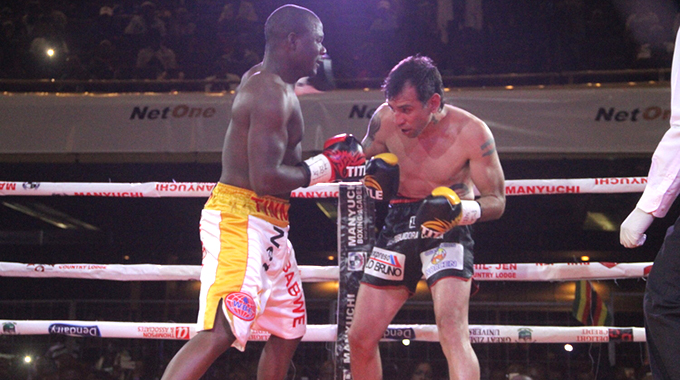 WHAT A NIGHT…This picture combo shows boxer Charles Manyuchi, before, during and after his historic World Boxing Federation middleweight fight against Diego Diaz Gallardo of Argentina at the Harare International Conference Centre yesterday which the Zimbabwean pugilist won with a three-round TKO victory.