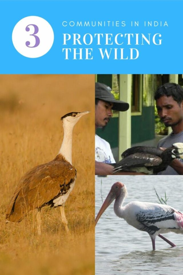 Protecting the wild with community help in India #CauseAChatter