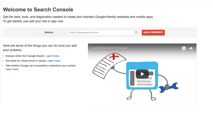 Search Console Home