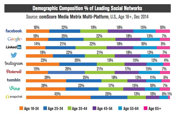 social media marketing guide demographic chart