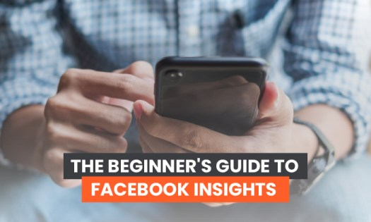 the beginner's guide to facebook insights