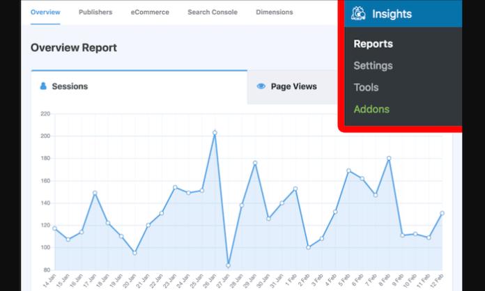 WordPress Best MonsterInsights Review