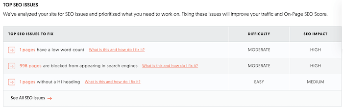 SEO for ecommerce: site audit SEO issues example in ubersuggest