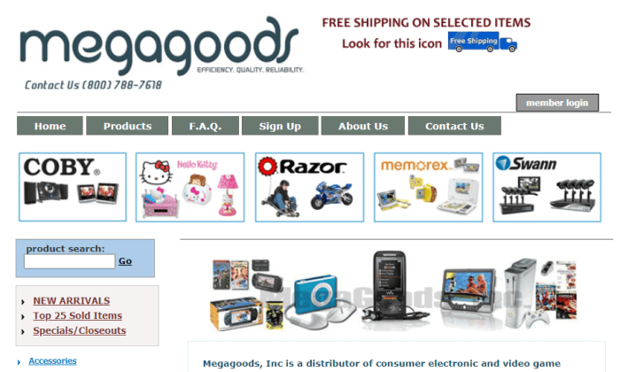 MegaGoods splash page for Best Dropshipping Companies