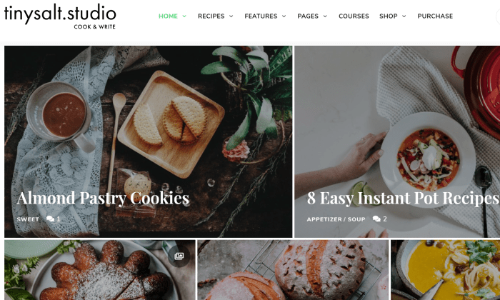 TinySalt demo page for Best WordPress Themes for Blogs