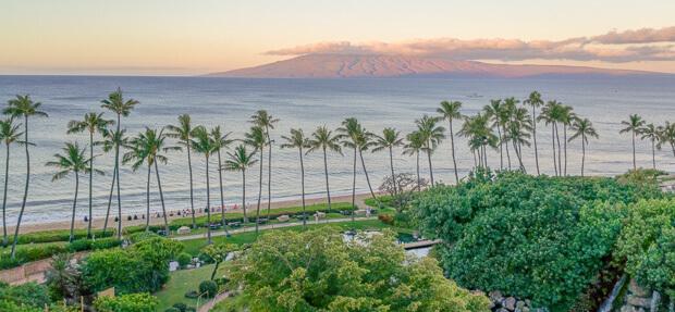 One Pot Mediterranean Chicken Maui Hawaii Teaser Image