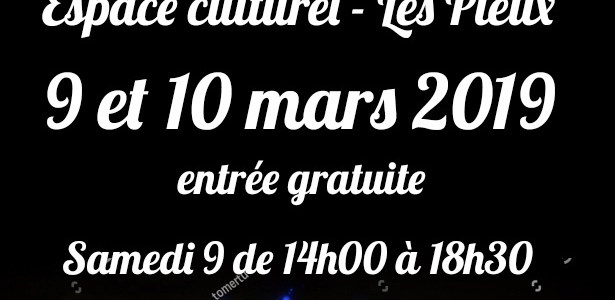 Salon du livre Les Pieux 2019