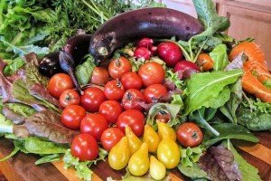 vegetables-farmersmkt-621782_640=pixabay | coaching