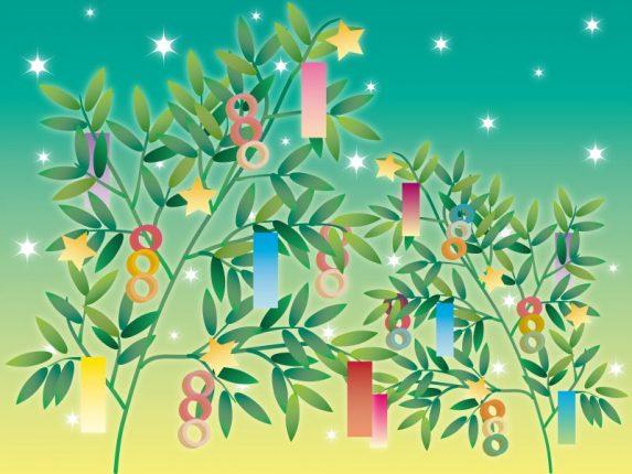 七夕飾りは笹と竹どっち?笹はどこで売ってるの?保存方法の裏技とは