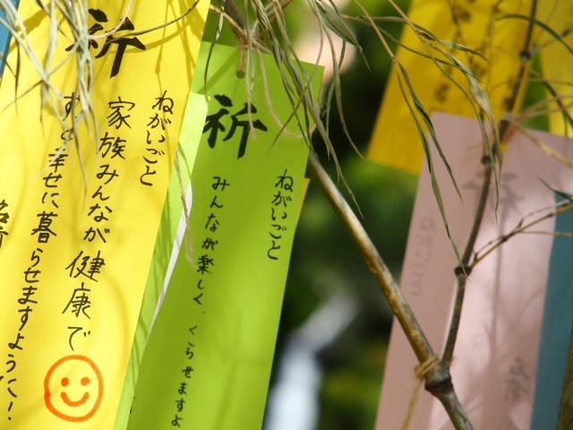 七夕に短冊を飾る由来と色の意味を知って願い事は色別で叶えよう!