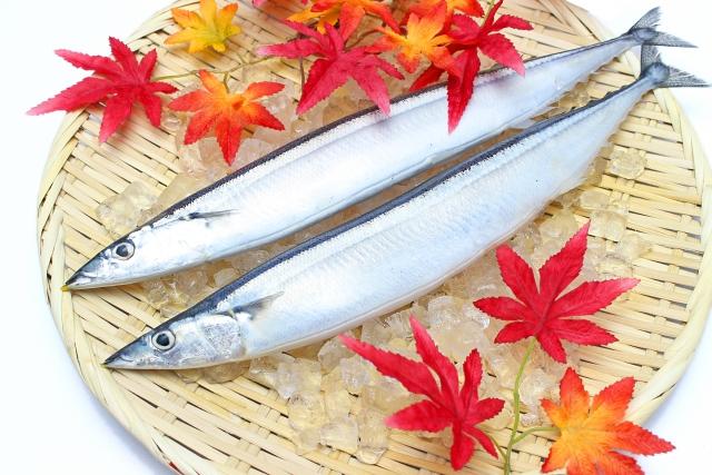秋刀魚のカロリーは一匹どのくらい?青魚はダイエットに不向き?