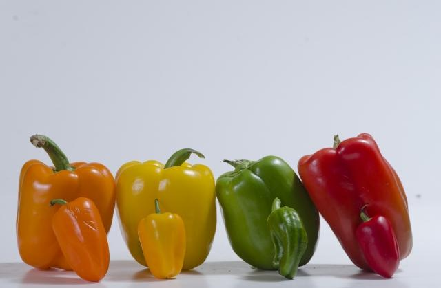 ピーマンとパプリカは同じもの?色が違うだけ?味や栄養の違いは?