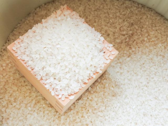 新米を炊く時に水を少なめにするのは昔の話?水加減の新常識とは?