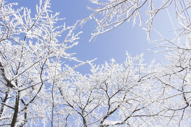 小寒2019年はいつ?二十四節気ではどんな季節?食べ物やイベントは?