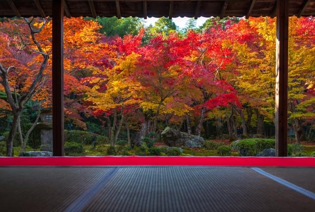 京都の紅葉の見頃はいつ?例年の時期とランキング外の穴場スポットをご紹介!