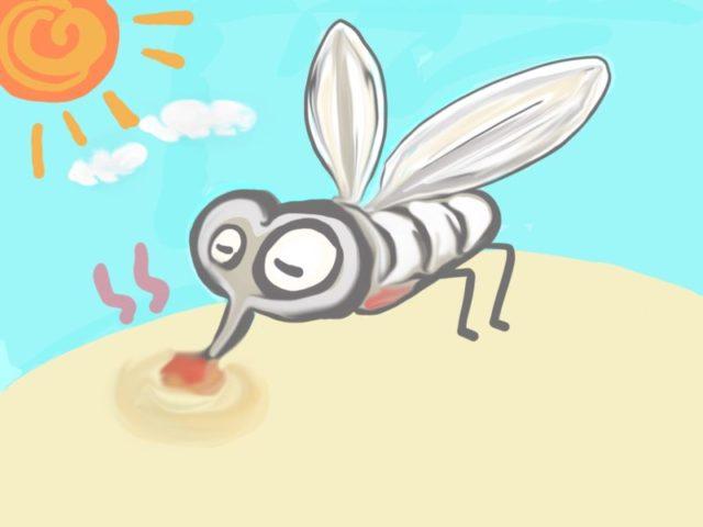 O型は蚊に刺されやすいって本当?蚊が寄ってくる理由や原因とは?
