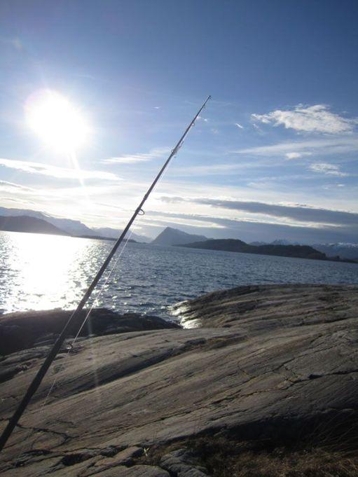 Lika fiskestonga