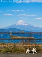 ある日の富士
