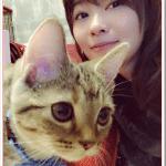 指原莉乃(サッシー)の猫の種類はマンチカン?値段や特徴は?