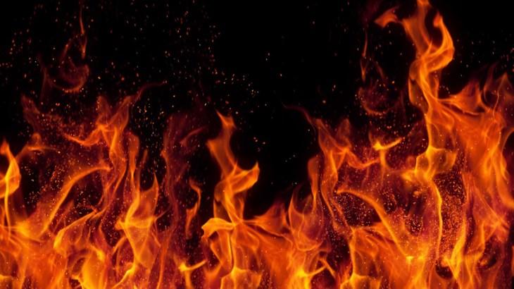 [朗報]アメリカの火災現場から猫が救出される。猫のための災害対策とは?