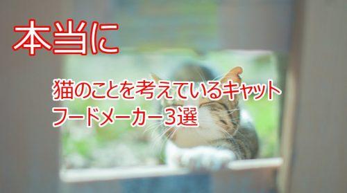 猫のおやつやフードで安全性の高いものを提供しているフードメーカーまとめ
