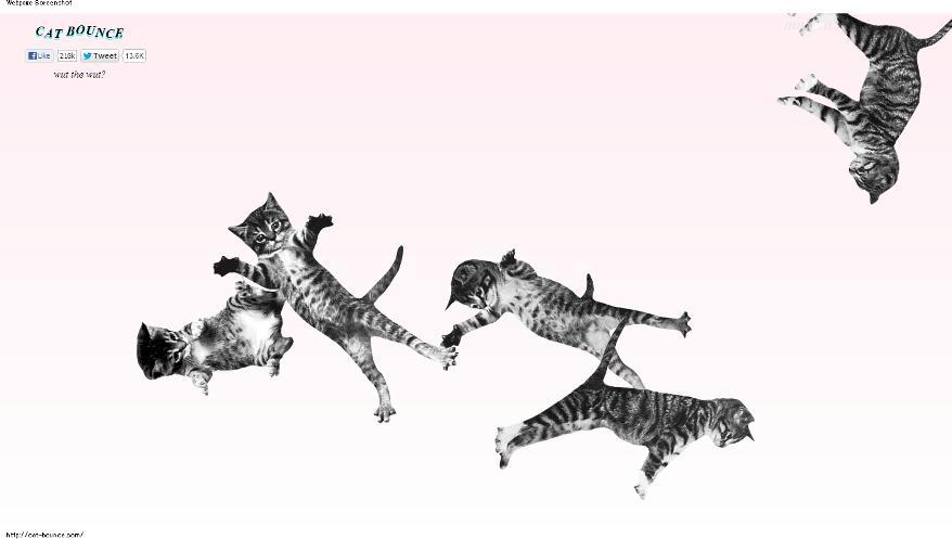 121030CATBOUNCE 002743 - 子猫が跳ねまくる、それだけのサイト「CAT BOUNCE!」