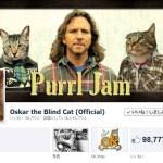 9万8千以上のいいねを集める猫、盲目のOskar