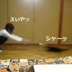 猫カーリングにご執心な黒猫と女の子(動画)