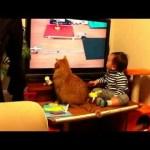 テレビ画面を飛び出る猫ピタゴラスイッチがすごい(動画)