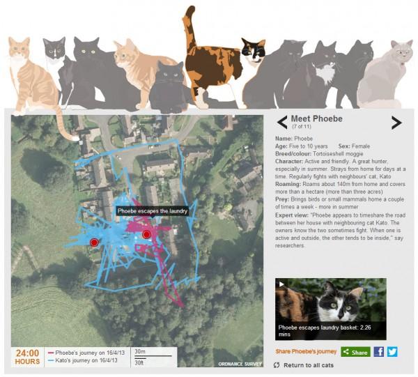 130619bbccat 600x541 - 小型カメラとGPSで「飼い猫はお散歩中に何を見ているのか」を調査