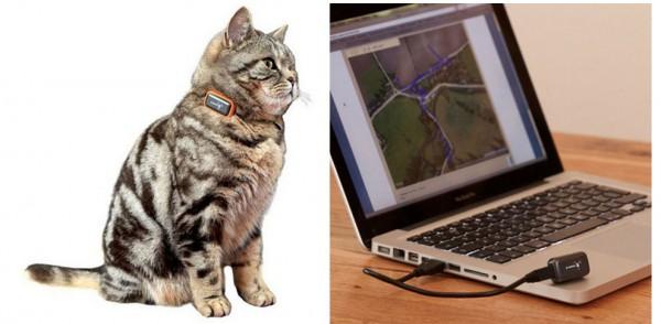 131201gpaws01 600x294 - 猫行動記録ガジェット「G-PawS」。オンライン地図上でのGPS移動ログ表示も可能
