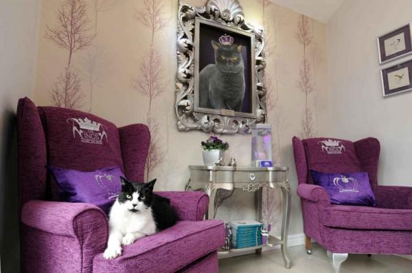 131205cathotel02 600x397 - ゴージャスにもほどがある、イギリスの猫ホテル「The Ings Luxury Cat Hotel」