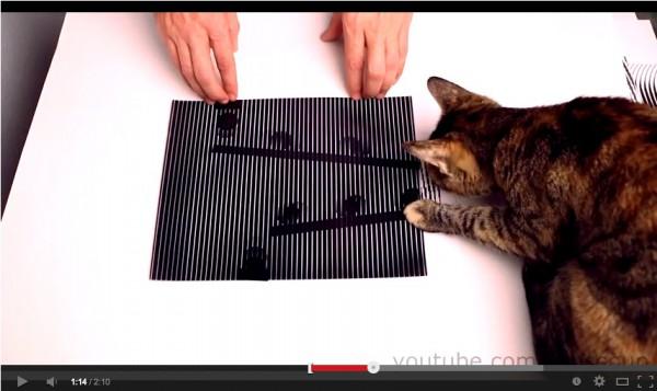 131213catmovie 600x357 - 猫の目でも動いて見える、スリットアニメーション(動画)