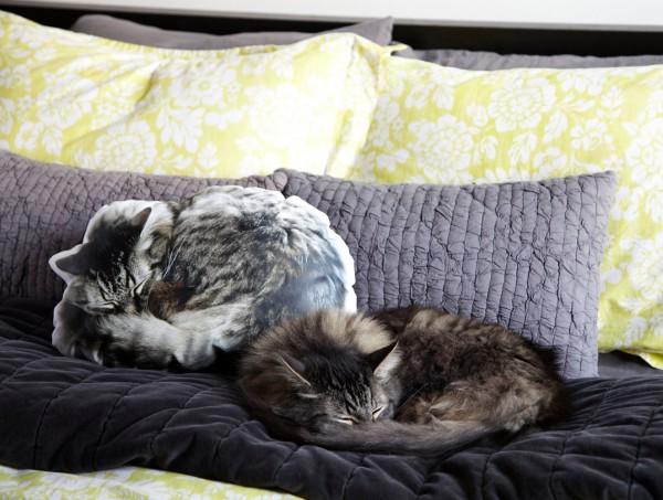 131218catcushion 600x453 - リアルすぎてかわいすぎる、眠り猫クッション